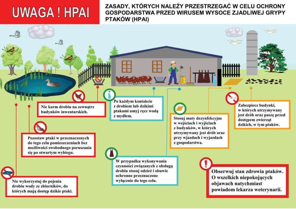 Plakat informujący o wirusie ptasiej grypy